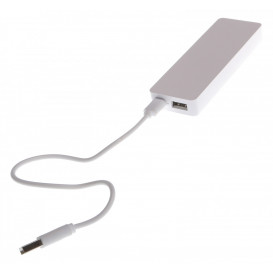 Power bank, vit